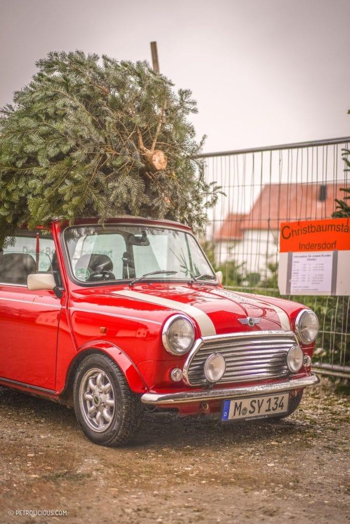 Kerstboom van de zaak