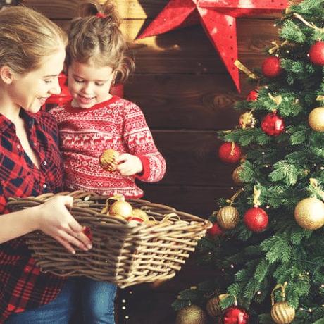 Pakket A Kerstboom van de Zaak